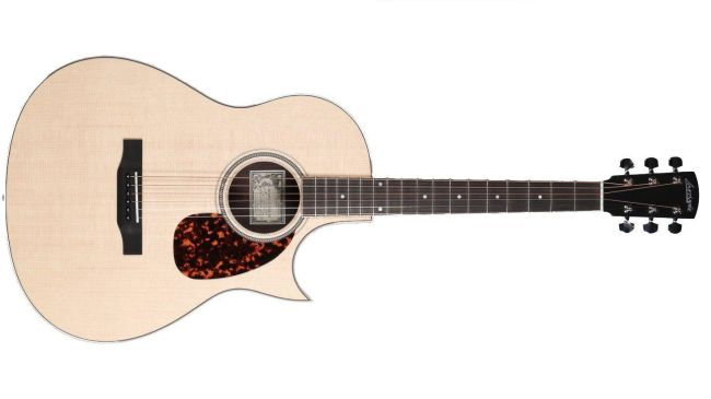 Tommy Emmanuel gitaar van Larrivee